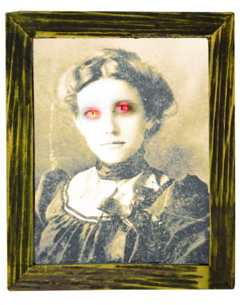Ghost Lady In Picture Frame Light 25 Cm