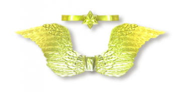 Golden Angel Wings with Halo