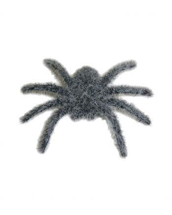 Haarige Minispinne grau