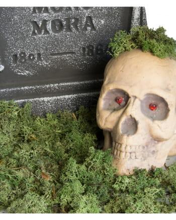 Halloween Deko Moos 100 g