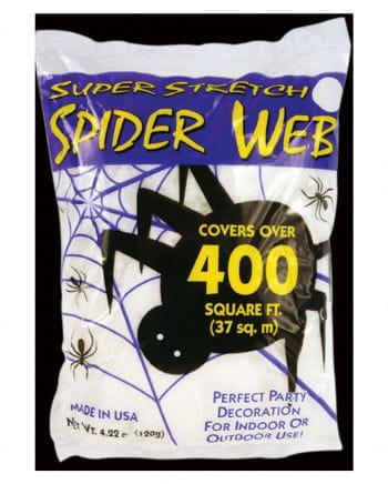Weißes Spinnennetz
