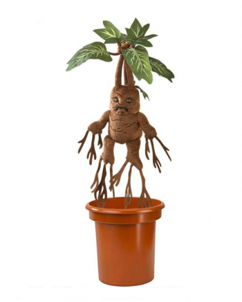 Harry Potter - Shrieking Mandrake In A Pot