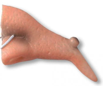 Witch Nose with Wart