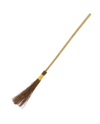 Witches` broom 101 cm