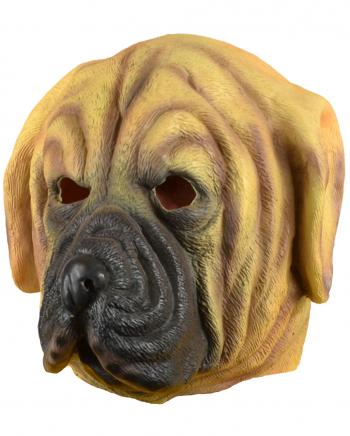 Bernhardiner Hunde Maske