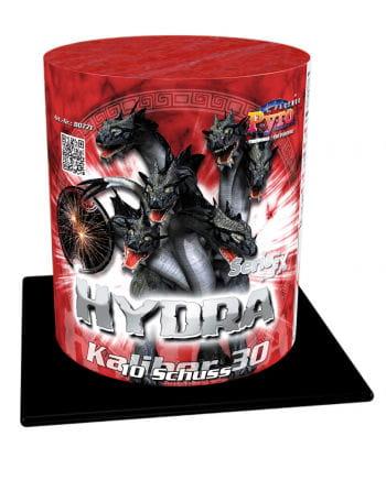 Hydra Battery Fireworks 10 shots