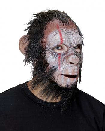Julius War Monkey Vollkopfmaske