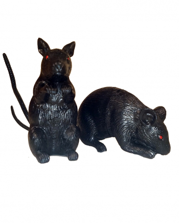 Schwarze, kleine Maus 8cm