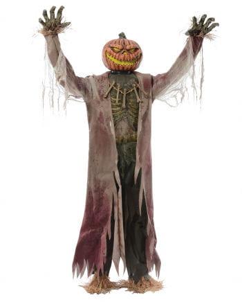 Pumpkin Scarecrow Halloween Animatronic