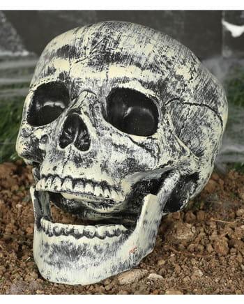 Kunststoff Totenschädel 20cm