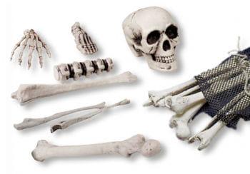 Skelett Kunststoffknochen 18-teilig