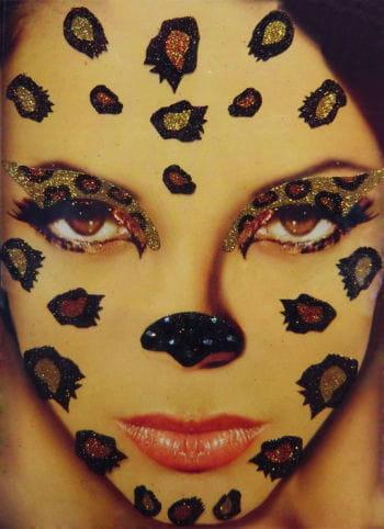 Xotic Eyes Leopard Make Up Set