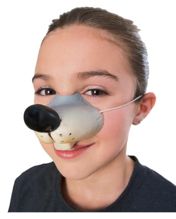 Witzige Mäuse Nase