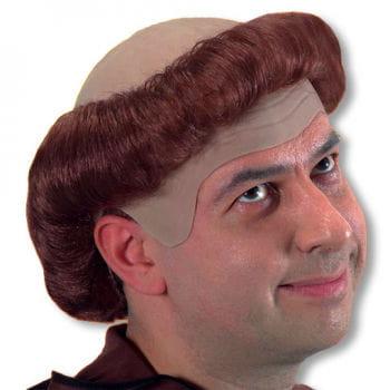 Monk Wig brown