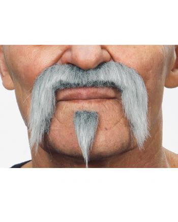 Musketeer beard Light gray