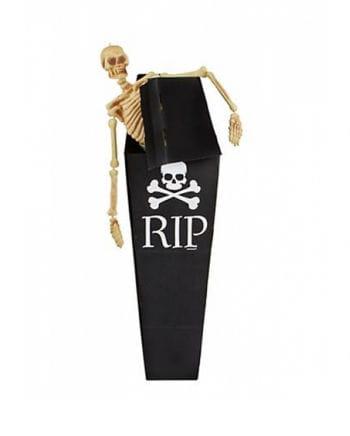 Cardboard coffin with skull motive