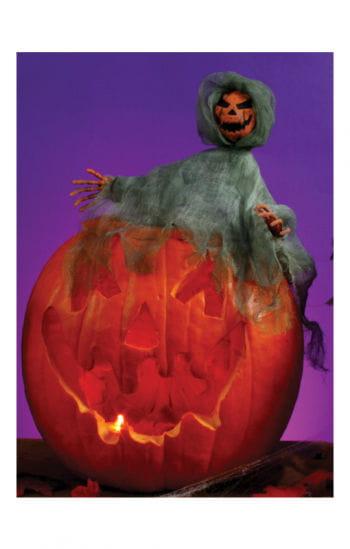 Pumpkin Hugger Jack O' Lantern