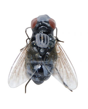 Realistic Meat Fly With Magnet