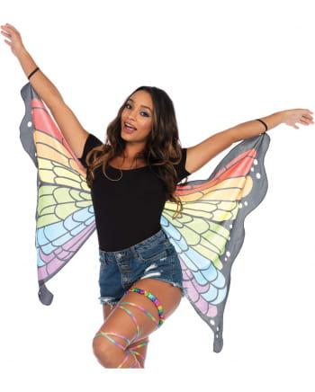 Rainbow Schmetterlingsflügel