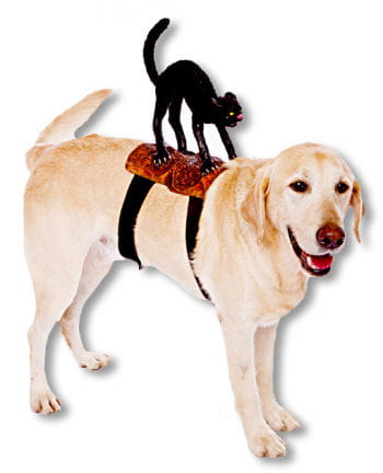 Rider Cat Dog Costume