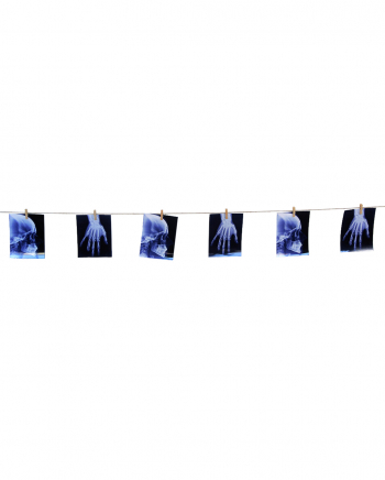 X-ray Images Garland 160cm
