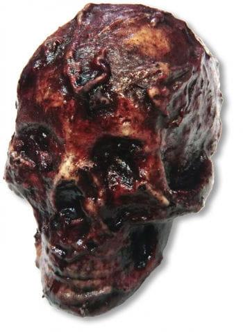Verrottender Totenschädel Latex klein