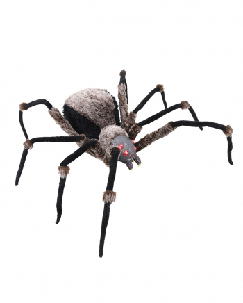 Black Giant Spider With Light Eyes 130cm