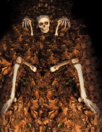 Skelett Gartendekoration