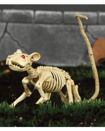 Ratten Skelett 20cm