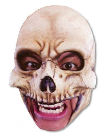 Skull Skull Head Mask