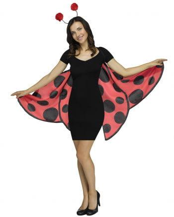 Soft Marienkäfer-Flügel mit Antennen