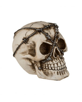 Money Box Skull With Barbed Wire