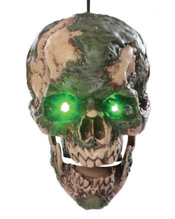 Talking Verified Zombie Skull