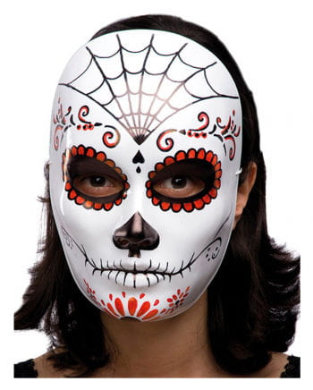 Halloween mask with spider web