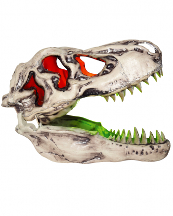 T-Rex Skull With Sound & Light