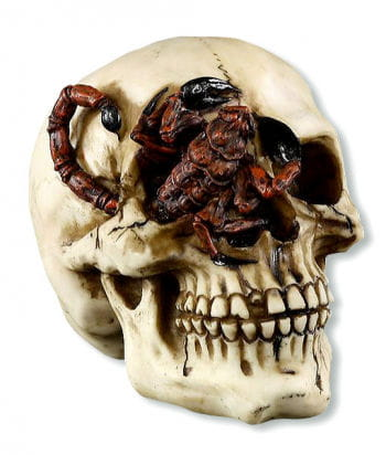 Skull with Scorpion in one Eye