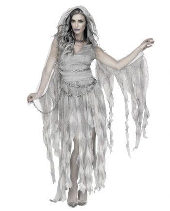 Enchanted Ghost Fairy Ladies Costume
