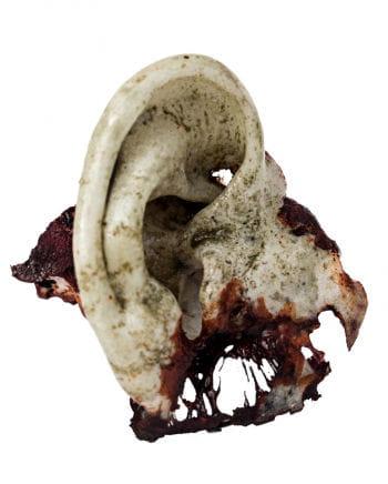 Walker Zombie ear