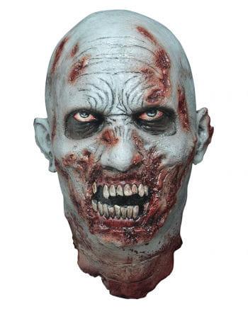 Geköpfter Zombie-Schädel