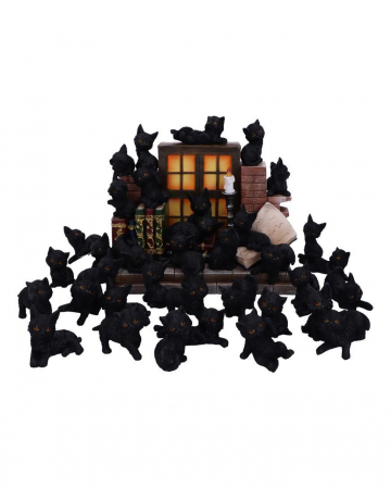 36 Black Cats With Mystic Gothic Display