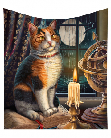Calico Katze mit Atlas Kuscheldecke
