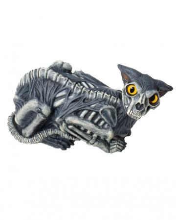 Spooky Dämonen Katze