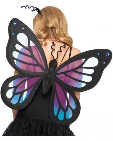 Dark Sensation Schmetterlings Flügel
