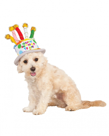 Birthday cake hat for dogs
