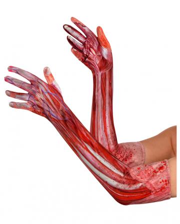 """""""Skinned"""" Halloween Gloves"""