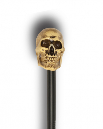 Walking Stick With Antique Skull