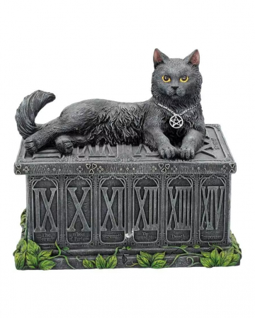 Lucky Guard Cat On Box