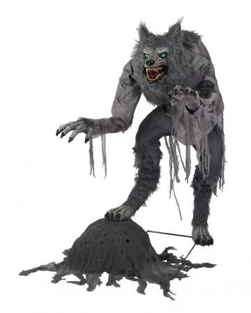 Blutrünstiger Werwolf Halloween Animatronic