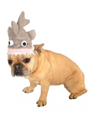 Shark hat for dogs