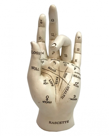 Palm Reading & Fortune Telling Hand